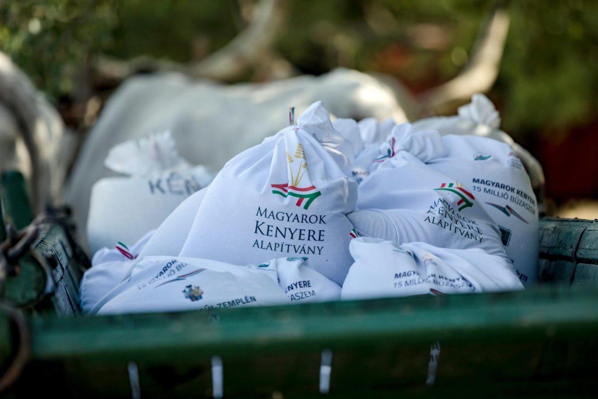 Összeöntötték a Magyarok Kenyere programban felajánlott búzát Ópusztaszeren