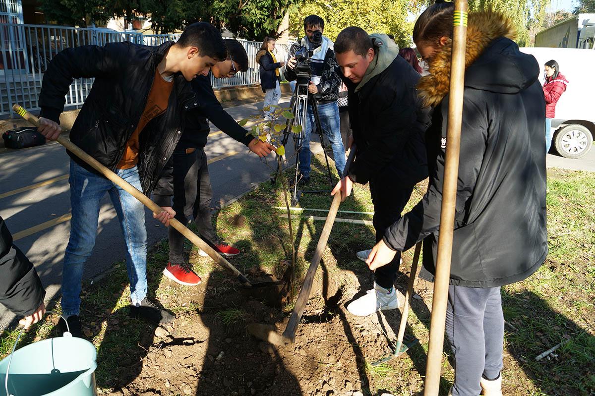 Fákat ültettek a diákok Békéscsabán a környezettudatos nap alkalmával